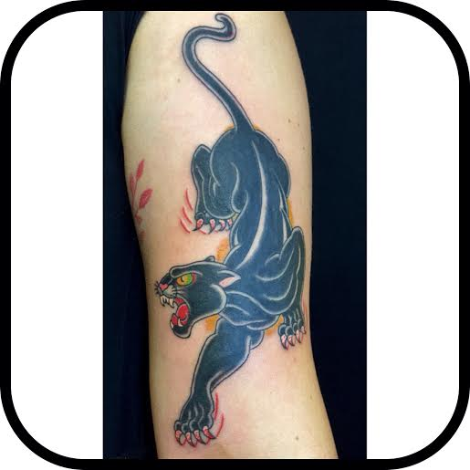 panther by Steve